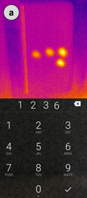 thermal image for password tracking